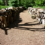 log-walk