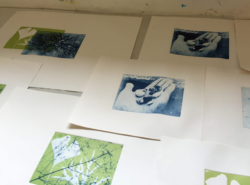 Solarplate prints(ii)