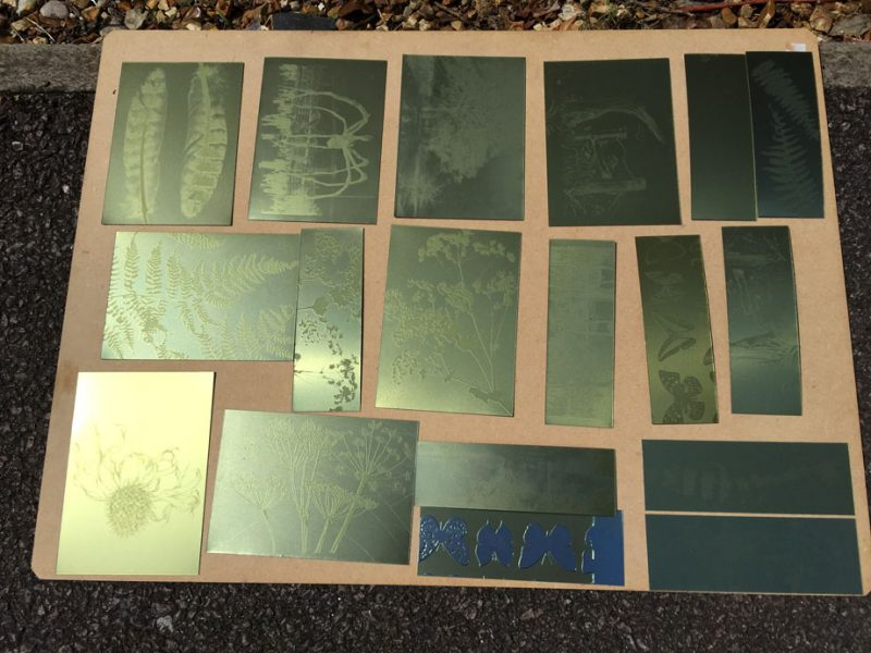 Plates hardening in the sun