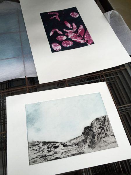 solarplate prints